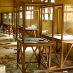 Damaged Museum Exhibits in Egypt