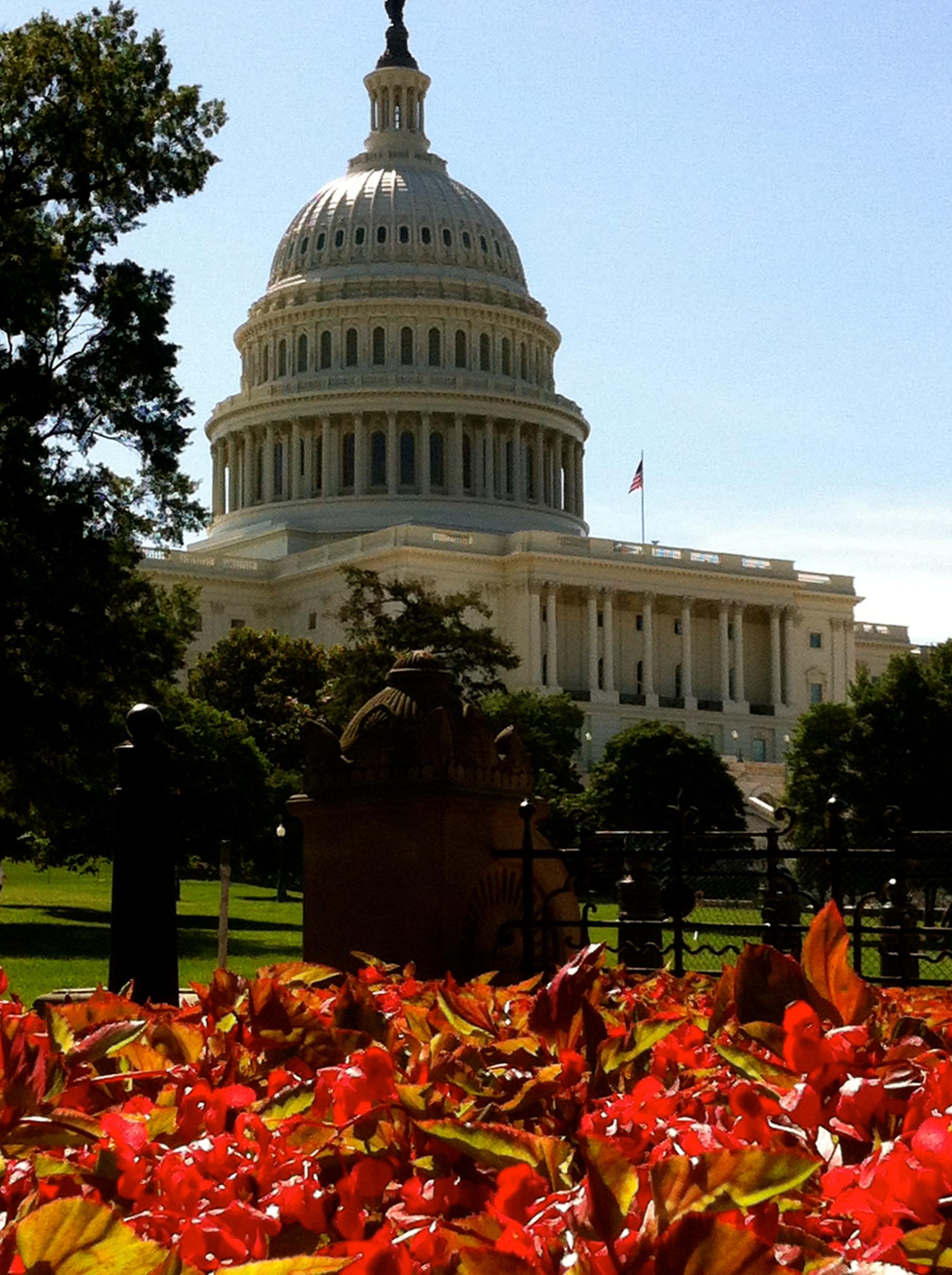 DC - Capitol Building - Katie (2) (1)