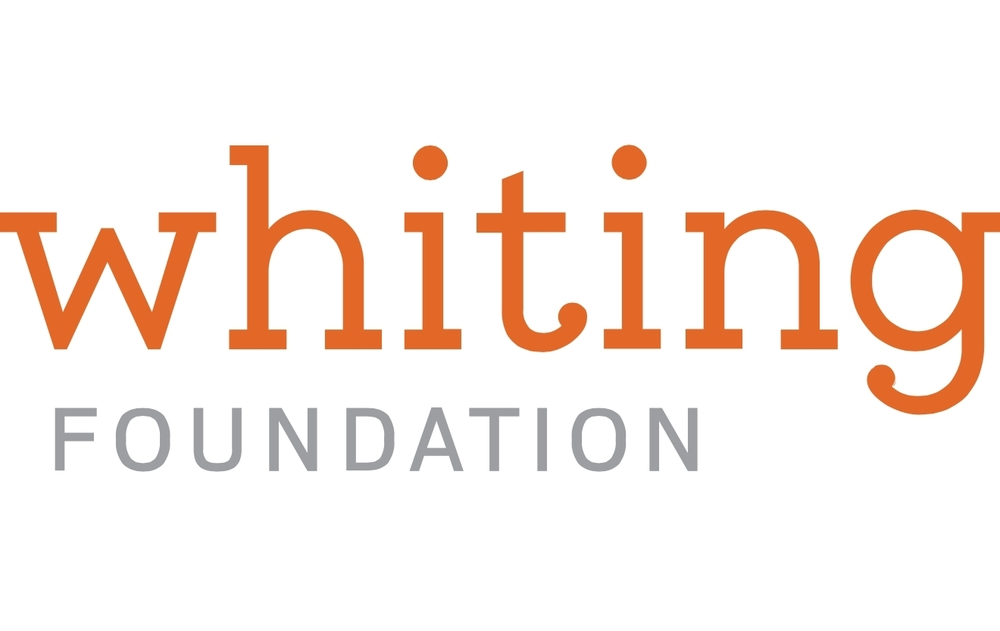 CLIR, Antiquities Coalition Initiative Receives Major Grant from the Whiting Foundation