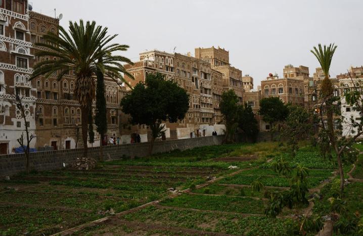 https://mk0antiquitiesc6hkgl.kinstacdn.com/wp-content/uploads/2019/03/Alex-Potter-After-image-of-Old-Sanaa-in-Yemen-1.jpg